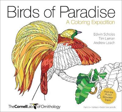 Birds of Paradise: A Coloring Expedition by Andrew Leach