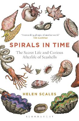 Spirals in Time by Helen Scales