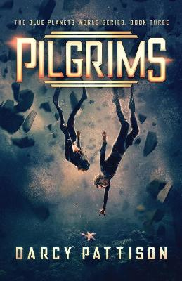 Pilgrims by Darcy Pattison