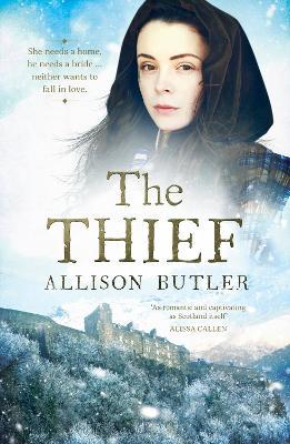 The Thief book