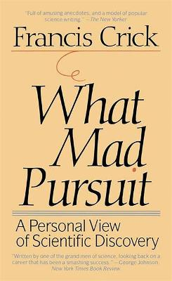 What Mad Pursuit book
