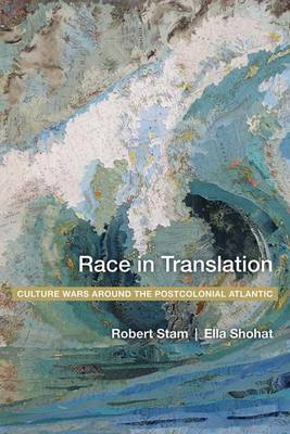 Race in Translation book