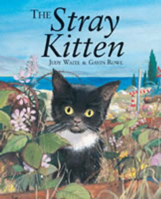 The Stray Kitten by Judy Waite