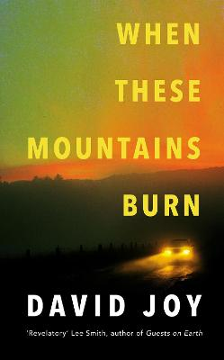 When These Mountains Burn by David Joy