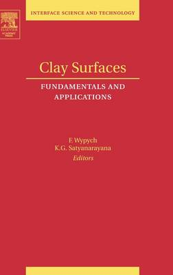 Clay Surfaces book