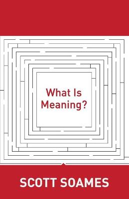 What Is Meaning? book