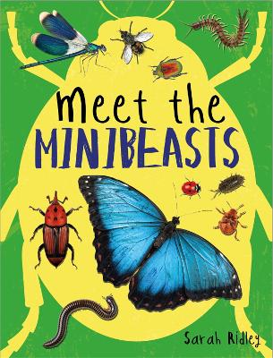 Meet the Minibeasts by Sarah Ridley