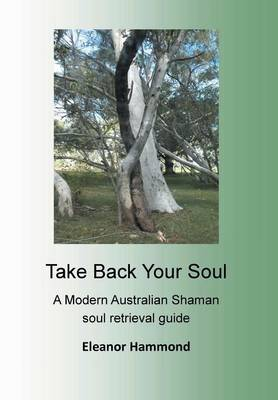 Take Back Your Soul book