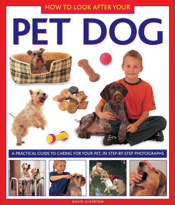How to Look After Your Pet Dog book