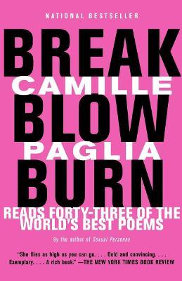 Break, Blow, Burn book