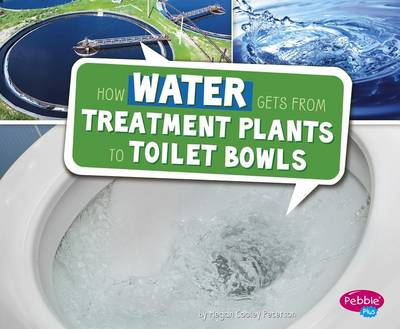 How Water Gets from Treatment Plants to Toilet Bowls by Megan Cooley Peterson