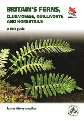 Britain's Ferns: A Field Guide to the Clubmosses, Quillworts, Horsetails and Ferns of Great Britain and Ireland by James Merryweather
