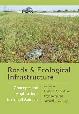 Roads and Ecological Infrastructure by Kimberly Andrews