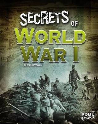 Secrets of World War I book