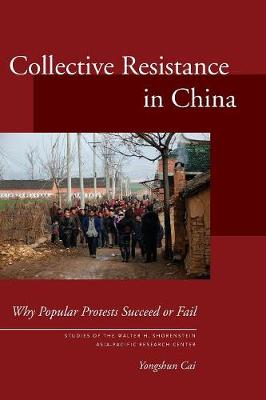 Collective Resistance in China book