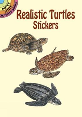 Realistic Turtles Stickers by Sy Barlowe