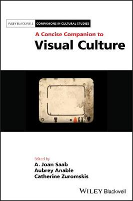 A Concise Companion to Visual Culture book