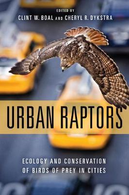 Urban Raptors by Clint Boal