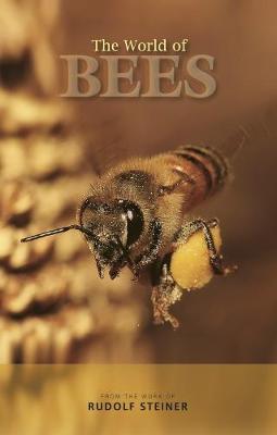 The World of Bees by Rudolf Steiner