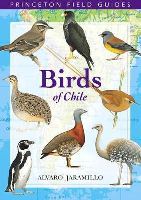 Birds of Chile by Alvaro Jaramillo