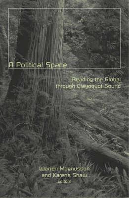 Political Space book