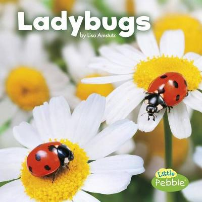 Ladybugs by Lisa J Amstutz