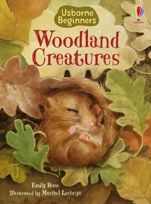 Woodland Creatures by Emily Bone
