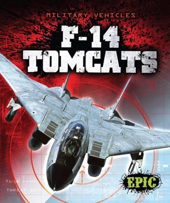 F-14 Tomcats by Denny Von Finn
