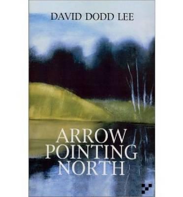 Arrow Pointing North by David Dodd Lee