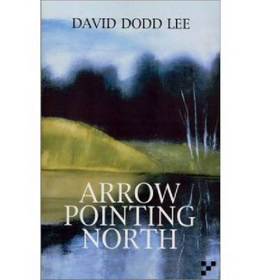 Arrow Pointing North by David Dodd Lee