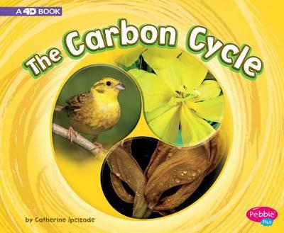Carbon Cycle book