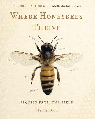 Where Honeybees Thrive by Heather Swan