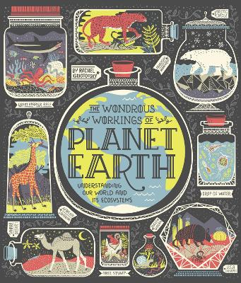 Wondrous Workings of Planet Earth by Rachel Ignotofsky