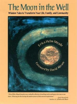 The Moon in the Well by Erica Helm Meade