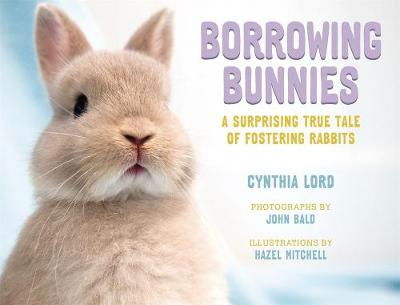Borrowing Bunnies: A Surprising True Tale of Fostering Rabbits by Cynthia Lord