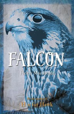 Falcon by Helen Macdonald