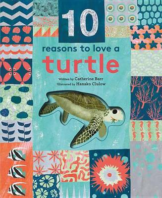 10 Reasons to Love A... Turtle by Catherine Barr