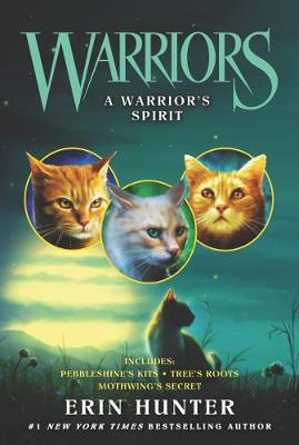Warriors: A Warrior's Spirit book