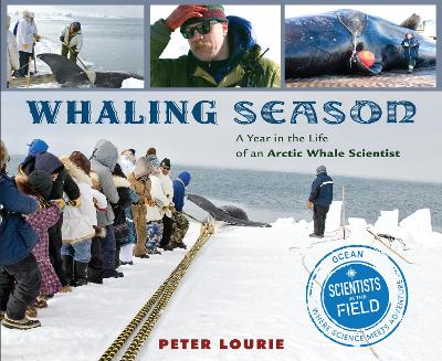 Whaling Season: A Year in the Life of an Arctic Whale Scientist by Peter Lourie
