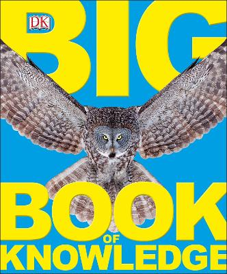 Big Book of Knowledge book
