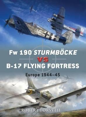 FW 190 Sturmbock Vs B-17 by Robert Forsyth