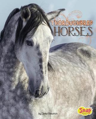 Thoroughbred Horses book