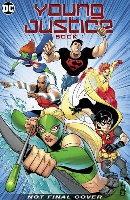 Young Justice: The Animated Series Book One: The Early Missions by Art Baltazar