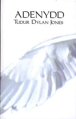 Adenydd by Tudur Dylan Jones