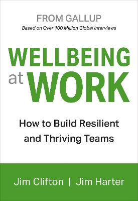 Wellbeing At Work by Jim Clifton