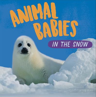 Animal Babies: In the Snow book