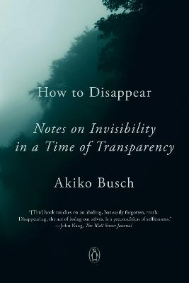 How To Disappear: Notes on Invisibility in a Time of Transparency by Akiko Busch