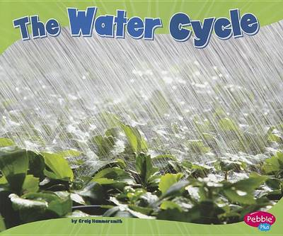 The Water Cycle by Craig Hammersmith