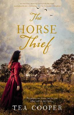 Horse Thief book