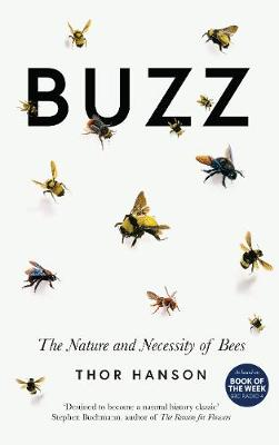 Buzz- EXPORT EDITION: The Nature and Necessity of Bees by Thor Hanson
